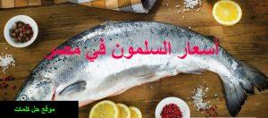 سعر السلمون في مصر اليوم 2019