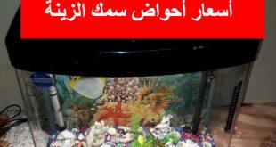 اسعار احواض السمك في سوق الجمعة
